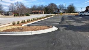 Plaza-Curbs2